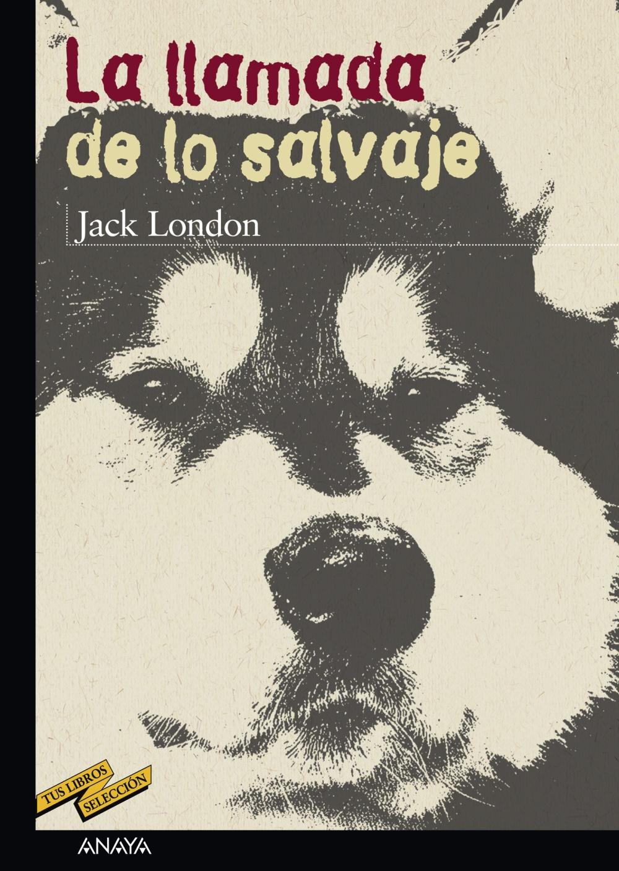 IJ00104201 Las 60 mejores novelas juveniles de todos los tiempos