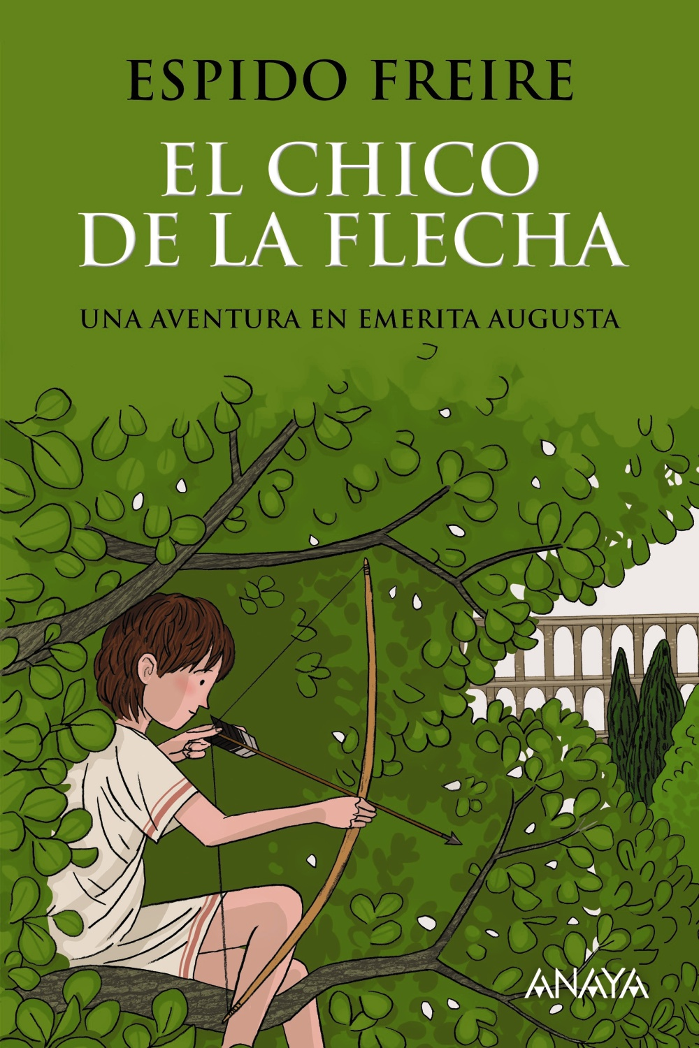 El chico de la flecha (ebook)