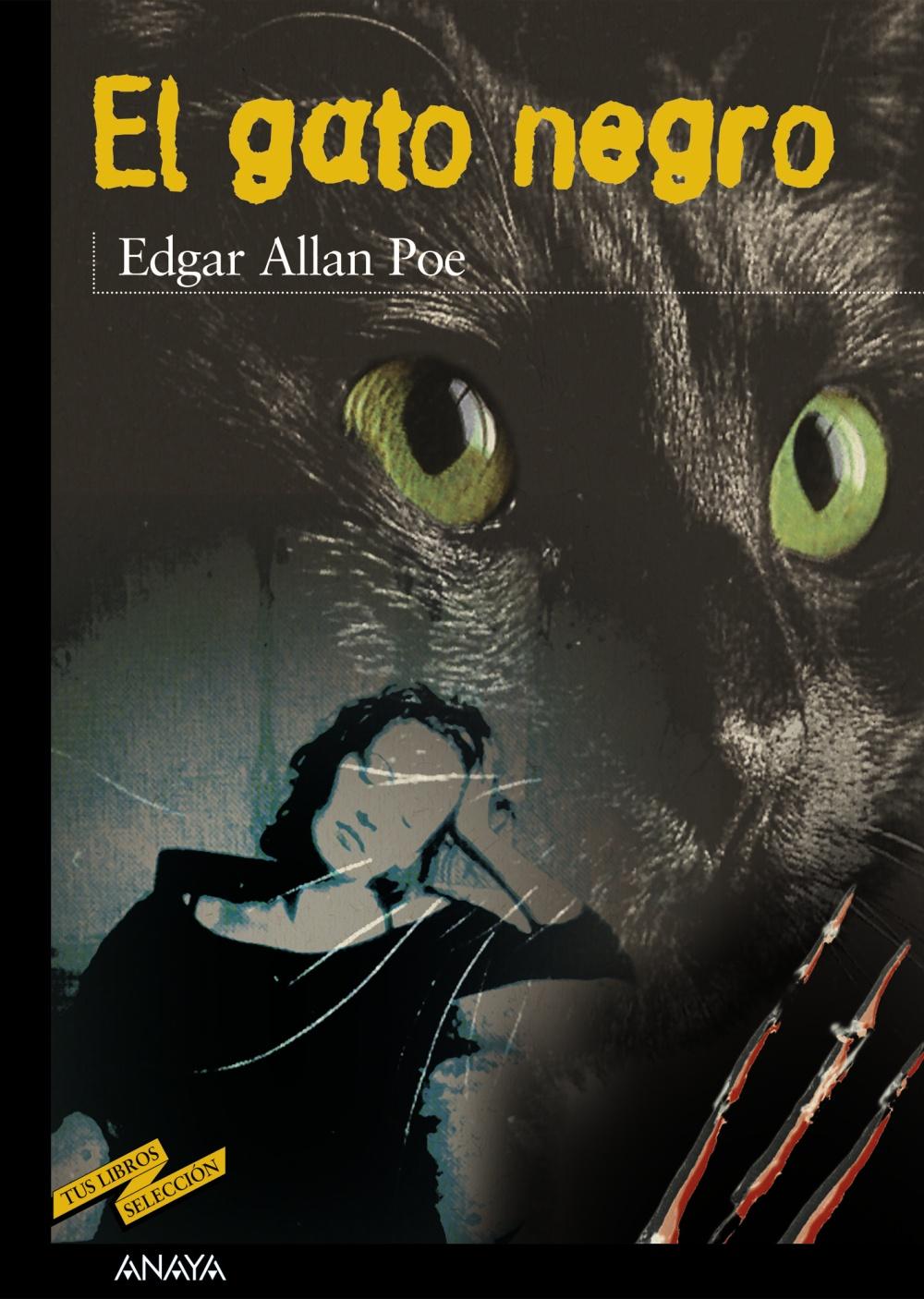 El gato negro anaya infantil y juvenil - El gato negro decoracion ...