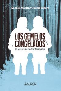 Imagen de la obra 'Los gemelos congelados'